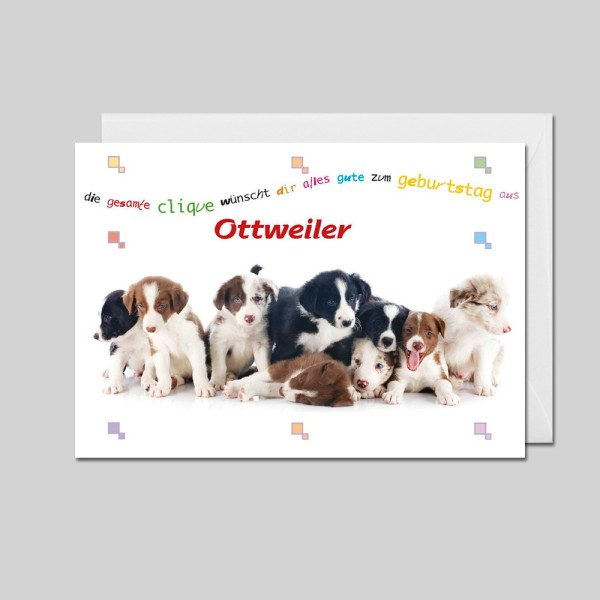City-Cards 9 Hundewelpen