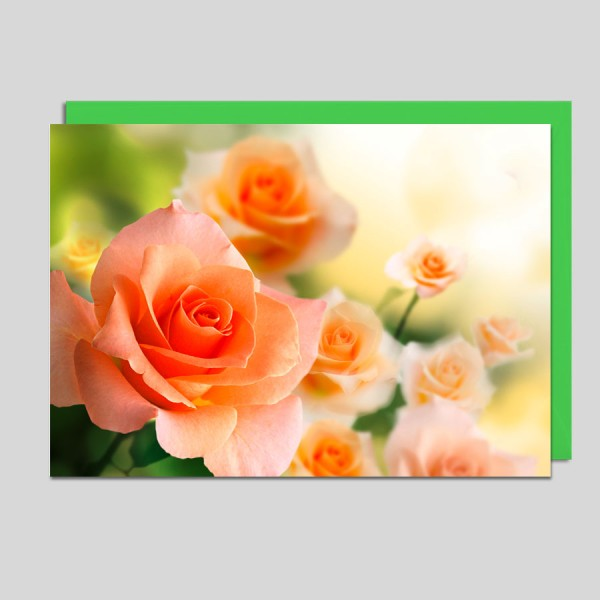 Fotokarte Rosenblüten