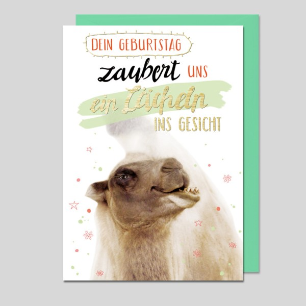 Animal Fun Geburtstag