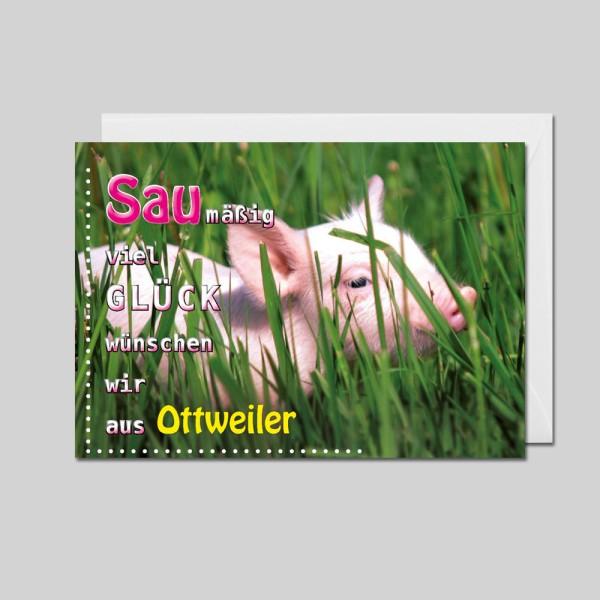City-Cards Schwein