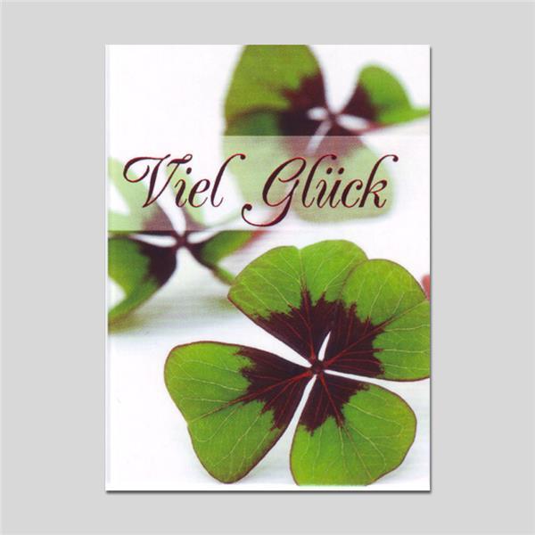 Minikarte Viel Glück mit Klammer