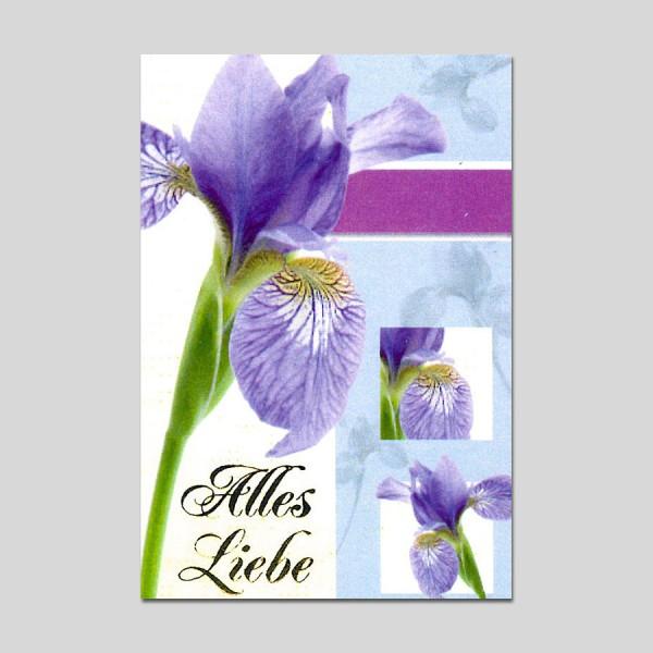 Minikarte Alles Liebe mit Klammer