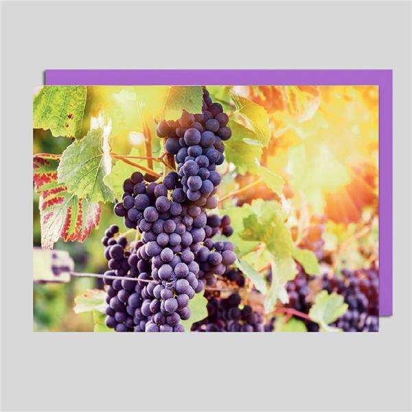 Fotokarte Wein