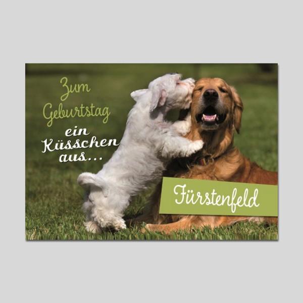 City-Cards 2 Hunde