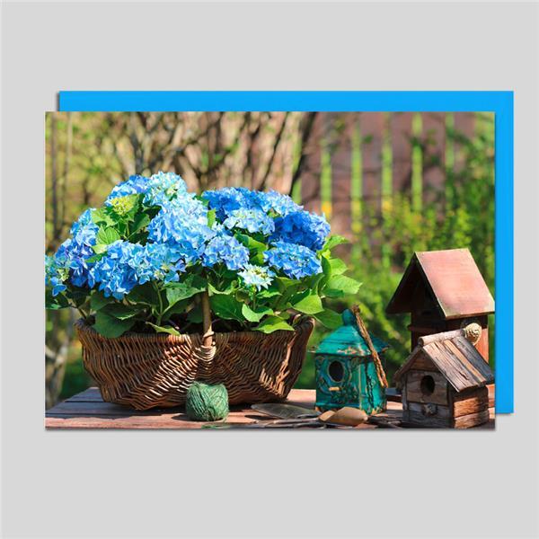 Fotokarte Hortensienkorb